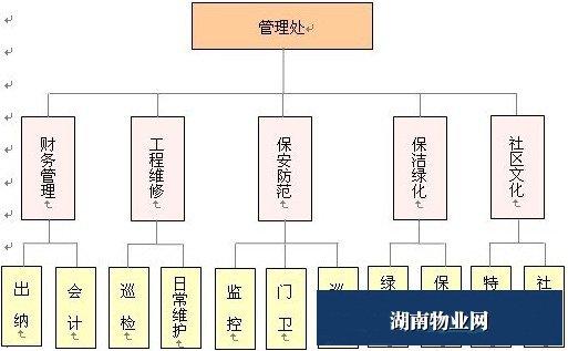 管理处组织架构图